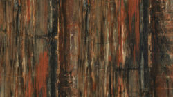 3474 Petrified Wood 180FX - Formica