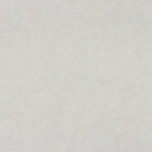 4168 Grey Pampas - Wilsonart