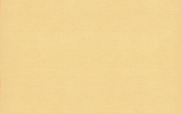4916 Sweet Corn - Wilsonart