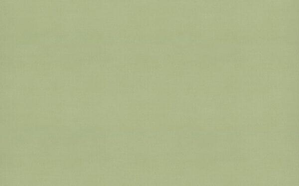 4918 Sprout - Wilsonart