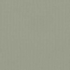 4993 Irish Linen - Wilsonart