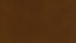 5617 Chocolate - Formica
