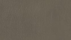 5619 Grey Thunder - Formica
