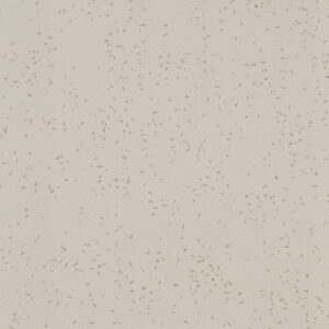 608 Limed Concrete - Formica Solid Surface