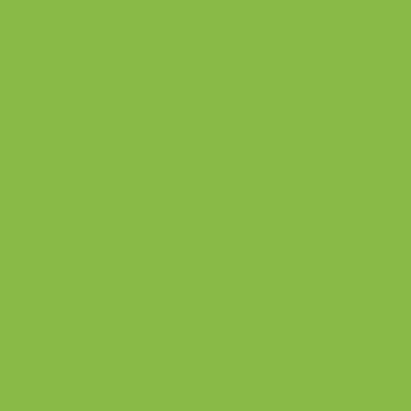 6901 Vibrant Green - Formica