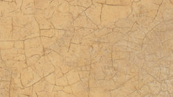 7701 Gilded Glaze - Discontinued - Formica