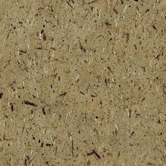 8005 Moss - Lamin-Art