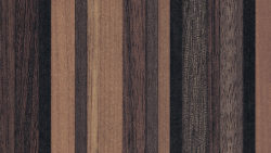 863 Myriad Ribbonwood - Formica