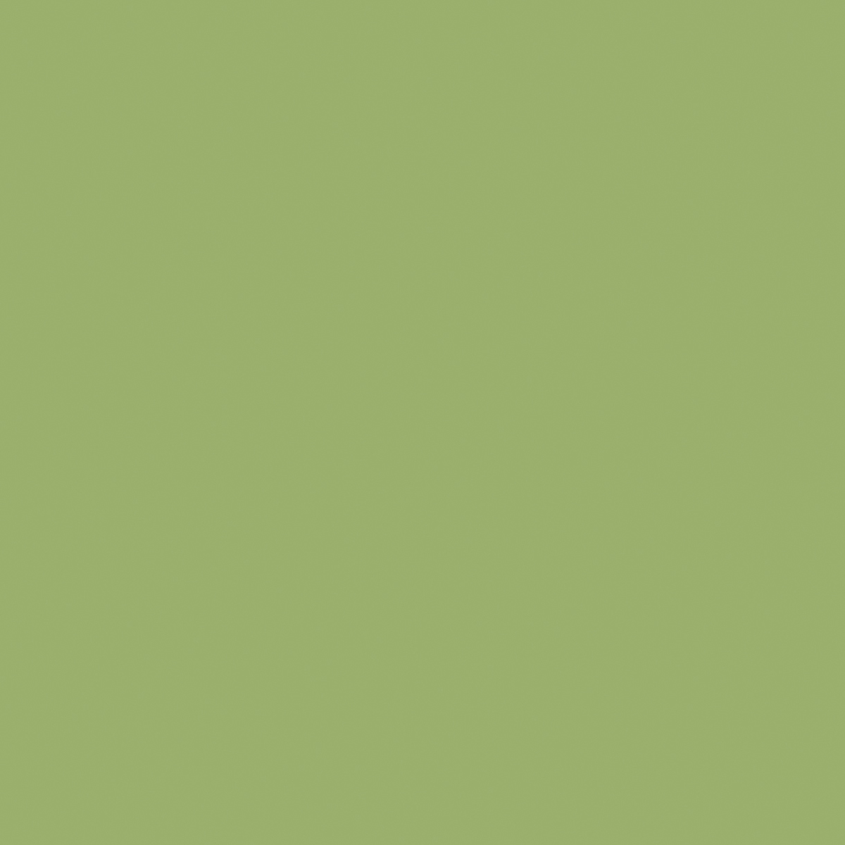 8820 Leaf Green - Formica