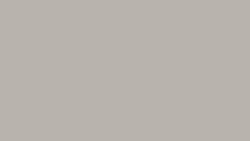 902 Platinum - Formica