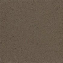 9063GG Capers - Wilsonart Solid Surface