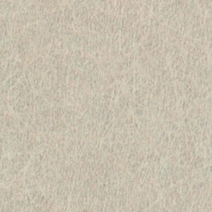 AG441 Taupe Serenity - Pionite