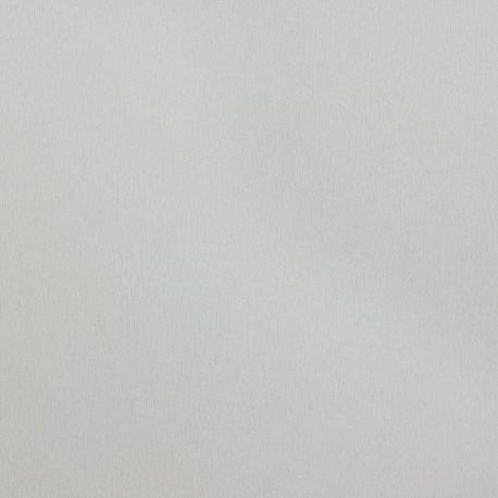 AG6300 Silver Wings - Nevamar
