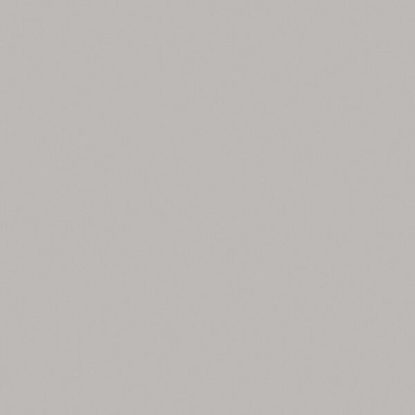 D381 Fashion Grey - Wilsonart