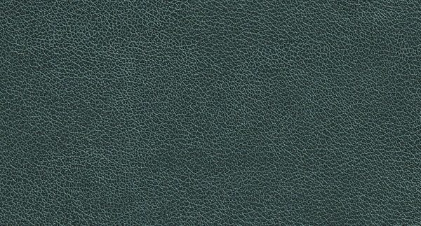 P331 Charcoal Chamois - Arborite