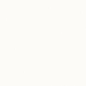 SW836 Winter White - Pionite