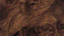 1835 Radica Scura - Arpa