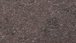 3358 Porfido Principe - Arpa