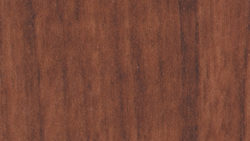 WW561 Spice Walnut - Pionite