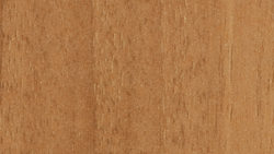 WW601 Cinnamon Noce - Pionite