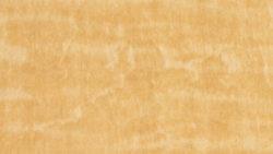 WZ0002 Mikado Woodprint - Nevamar