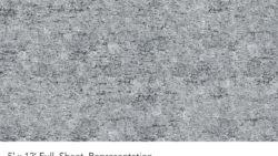 Y0424 Slate Birch - Wilsonart