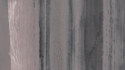 3013-VNR Grey Oak Wash Veneer - InteriorArts
