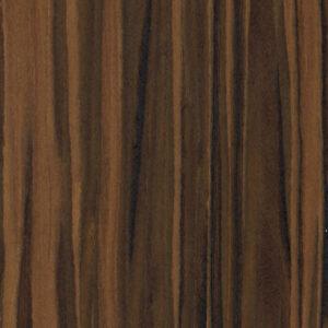 64204 Ebony Safari - Treefrog